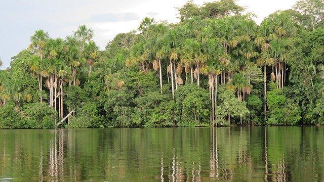 iquitos selva peru