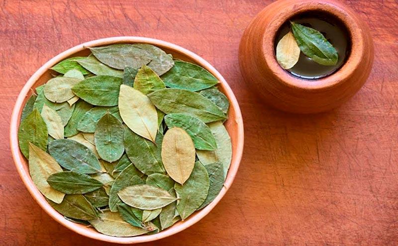 hojas de coca soroche viajar de lima a cusco incas peru